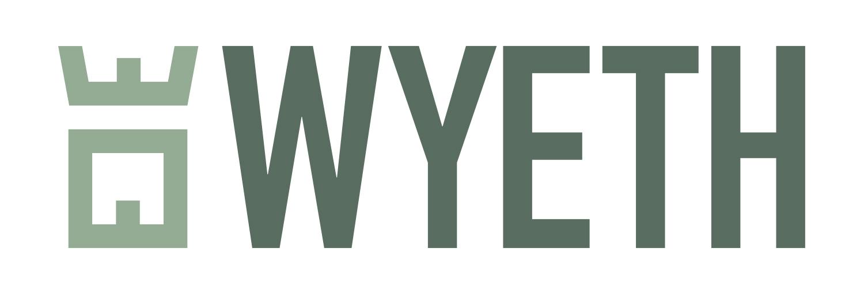wyeth isle of wight builder logo design